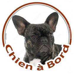 """Sticker rond """"Chien à Bord"""" 15 cm, Bouledogue Français bringé Tête"""