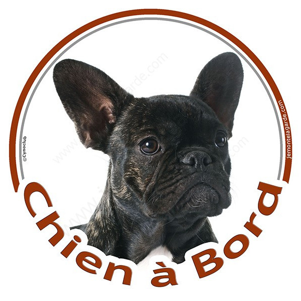 """Sticker autocollant rond """"Chien à Bord"""" 15 cm, Bouledogue Français noir bringé Tête, adhésif vitre voiture Bulldog auto"""
