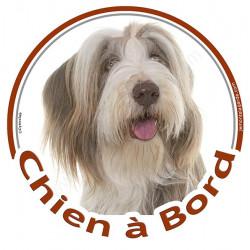 """Sticker autocollant rond """"Chien à Bord"""" 15 cm, Bearded Collie Blanc et fauve Tête, adhésif vitre voiture, auto marron beige"""