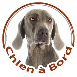 """Sticker autocollant rond """"Chien à Bord"""" 15 cm, Braque de Weimar Tête, adhésif vitre voiture, chien auto"""