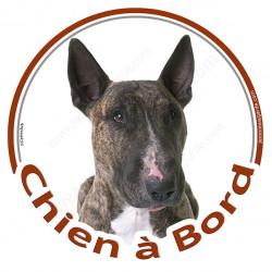 """Sticker autocollant rond """"Chien à Bord"""" 15 cm, Bull Terrier bringé Tête, adhésif vitre voiture bringué"""