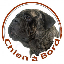 """Sticker autocollant rond """"Chien à Bord"""" 15 cm, Bullmastiff bringé Tête, adhésif vitre voiture bringué"""