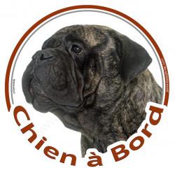 "Sticker rond ""Chien à Bord"" 15 cm, Bullmastiff bringé Tête"