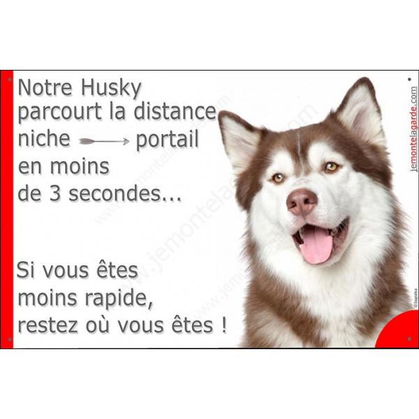 Husky marron Tête, Plaque Portail distance niche-portail 3 secondes, pancarte, affiche panneau