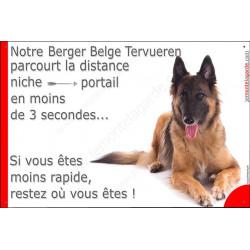 Berger Belge Tervueren couché, Plaque Portail distance niche-portail 3 secondes, pancarte, affiche panneau attention au chien