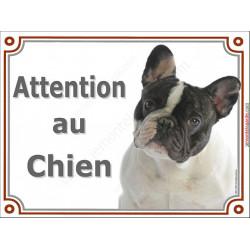 Plaque portail 2 tailles Attention au Chien ! Bouledogue Français Caille blanc et noir Tête, pancarte panneau
