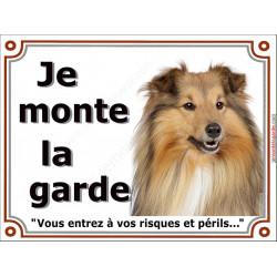 Plaque portail 2 tailles Je Monte la Garde, Colley Fauve tête, risques et périls pancarte panneau attention au chien