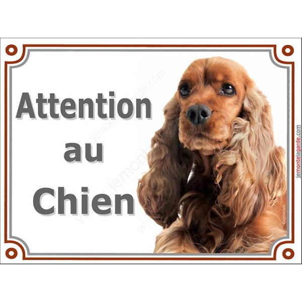 Plaque portail 2 tailles Attention au Chien, Cocker Anglais Golden Tête panneau pancarte