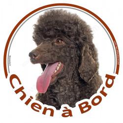 """Sticker autocollant rond """"Chien à Bord"""" 15 cm, Caniche marron brun chocolat Tête, adhésif vitre voiture"""