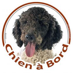 """Sticker autocollant rond """"Chien à Bord"""" 15 cm, Chien d'Eau Espagnol blanc et noir Tête, adhésif vitre voiture turc"""