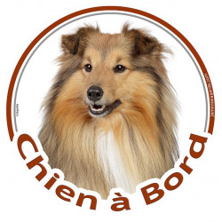 "Colley fauve, sticker voiture rond ""Chien à Bord"" 15 cm"