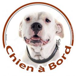"""Sticker autocollant rond """"Chien à Bord"""" 15 cm, Dogue Argentin Tête, adhésif vitre voiture chien"""