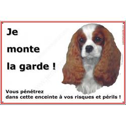 Cavalier King Charles Blenheim, Plaque Portail Horizontale Je Monte la Garde, panneau pancarte affiche, risques et périls