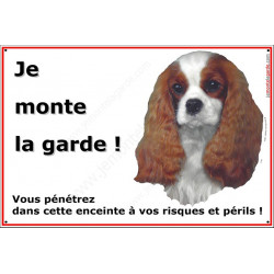 Plaque 24 cm ECO Je Monte la Garde, Cavalier King Charles Blenheim