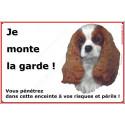 "Cavalier Blenheim, plaque ""Je Monte la Garde"" 24 cm ECO"