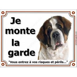 """St-Bernard Tête, plaque """"Je Monte la Garde"""" 4 tailles LUX B"""