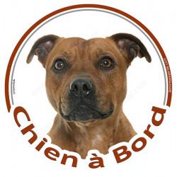 """Sticker autocollant rond """"Chien à Bord"""" 15 cm, Staffie fauve marron, Staffy Tête, adhésif vitre voiture"""