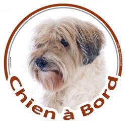 """Sticker autrocollant rond """"Chien à Bord"""" 15 cm, Terrier du Tibet blanc et fauve poils courts Tête, adhésif vitre voiture"""