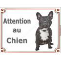Plaque 3 Tailles Attention au Chien Bouledogue Français Bringé Entier