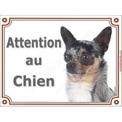 Plaque portail 2 tailles LUXE Attention au Chien, Chihuahua merle à poils courts Tête pancarte panneau arlequin