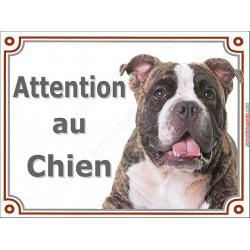 Plaque portail 2 tailles LUXE Attention au Chien, American Bully Tête pancarte panneau