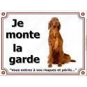"""Setter Irlandais assis, plaque """"Je Monte la Garde"""" 3 tailles LUX B"""
