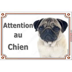 """Carlin fauve Tête, plaque """"Attention au Chien"""" 4 tailles LUXE A"""
