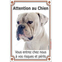 "Bouledogue USA blanc tête, plaque verticale ""Attention au Chien"" 24 cm LUXE"