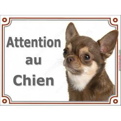 Plaque portail 2 tailles LUXE Attention au Chien, Chihuahua marron chocolat à poils courts Tête pancarte brun dilué panneau
