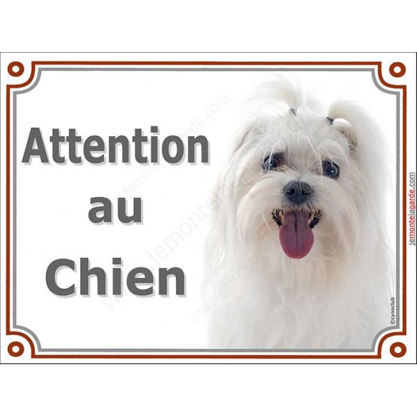 Plaque portail 2 tailles LUXE Attention au Chien, Bichon Maltais tête pancarte panneau affiche