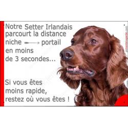 """Setter Irlandais, plaque humour """"distance Niche - Portail"""" 24 cm 3SEC"""