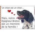 """Epagneul Breton, plaque """"Membre de la Famille"""" 24 cm LOV"""