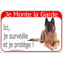 Berger Belge Tervueren Couché, Plaque Portail rouge Je Monte la Garde, surveille protège, pancarte, affiche panneau attention