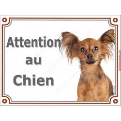 Plaque portail 2 tailles LUXE Attention au Chien, Russkiy Toy fauve marron Tête, pancarte panneau petit chien russe