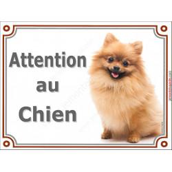"""Spitz Fauve assis, plaque portail """"Attention au Chien"""" 3 tailles LUX A"""