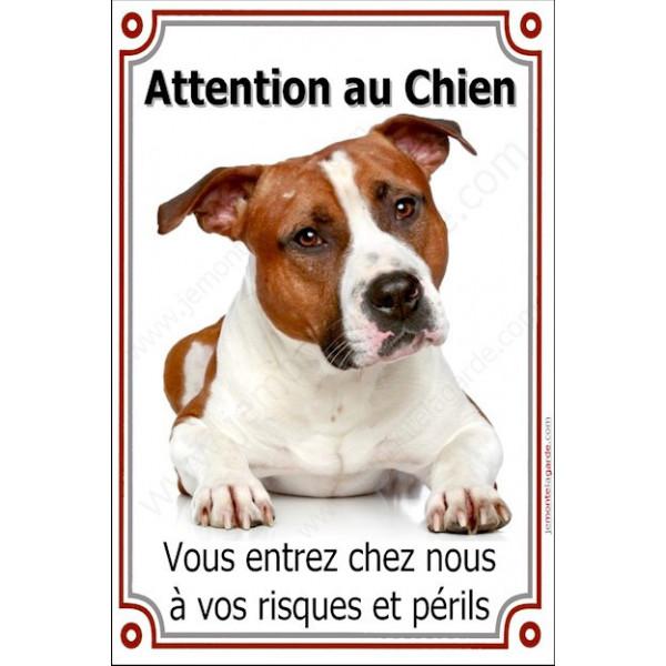 """Amstaff fauve, plaque portail verticale """"Attention au chien, risques et périls"""" pancarte photo affiche panneau staff american"""