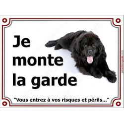 Terre Neuve Noir, Plaque Portail Je Monte la Garde, Risques et périls, panneau pancarte affiche