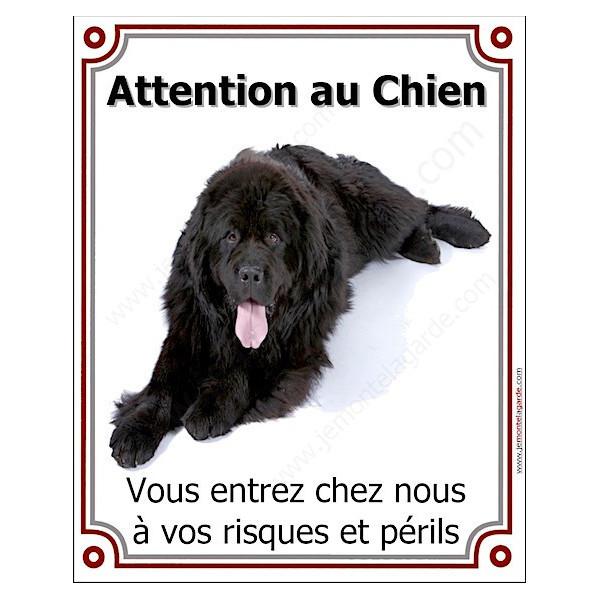"""Terre Neuve Noir, Plaque Portail """"Attention au Chien, risques périls"""" verticale, pancarte, affiche panneau photo"""