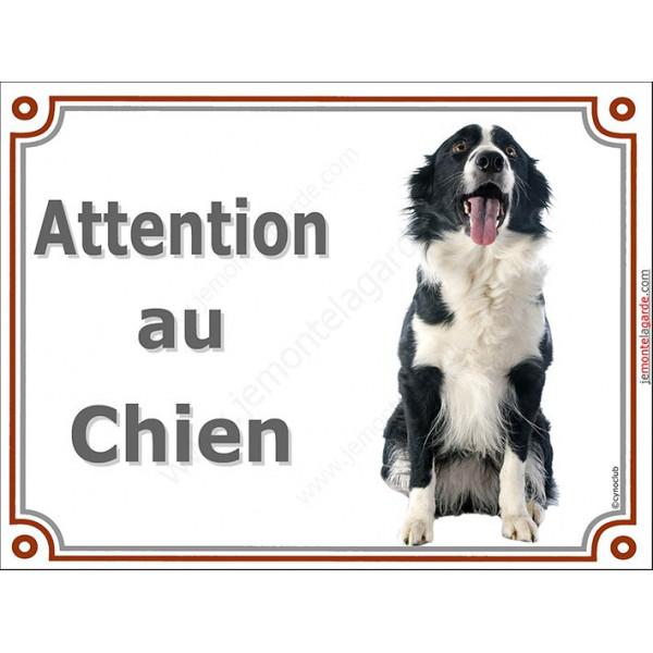 Border Collie sympa Assis, Plaque portail Attention au Chien, panneau affiche pancarte