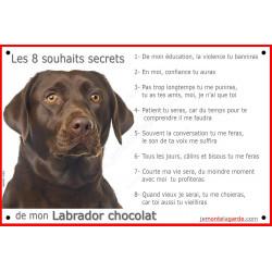 Labrador Chocolat Tête, Plaque Portail Les 8 Souhaits Secrets, pancarte, affiche panneau, commandements éducation brun marron
