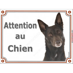 Plaque portail Attention au Chien, Kelpie Australien Tête, pancarte panneau Kelpy