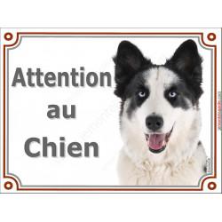 """Laika de Yakoutie Tête, plaque portail """"Attention au Chien"""" pancarte panneau Yakutian photo"""