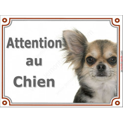 """Chihuahua, plaque """"Attention au Chien"""" 2 tailles LUXE C"""