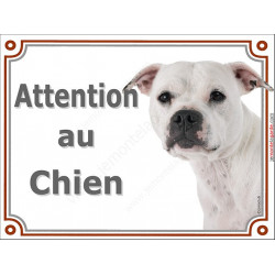 Plaque 2 tailles LUXE Attention au Chien, Staffie blanc Tête