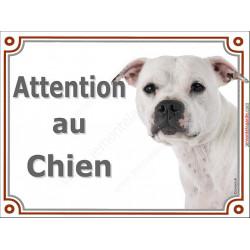 """Staffie blanc Tête, plaque portail """"Attention au Chien"""" 2 tailles LUX A"""