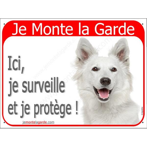 Berger Blanc Suisse Tête, Plaque Rouge Je Monte la Garde, surveille protège, affiche panneau attention au chien