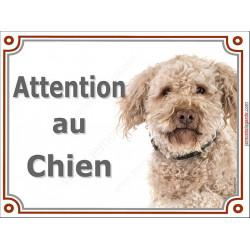 """Lagotto Romagnolo Tête, plaque """"Attention au Chien"""" pancarte panneau photo chien d'eau Romagole"""