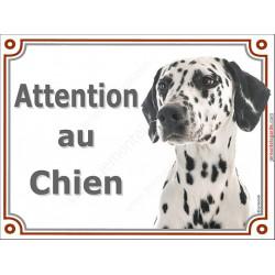 """Dalmatien Tête, plaque """"Attention au Chien"""" 2 tailles LUX A"""