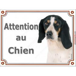 Plaque portail 2 tailles LUXE Attention au Chien, Chien Courant Suisse Bernois Tête pancarte panneau