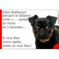 Plaque humour Attention chien Brabençon parcourt distance niche portail moins de 3 secondes, si vous êtes moins rapide